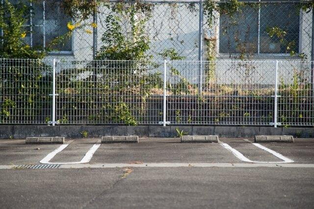 駐車場にある草木ぼーぼー